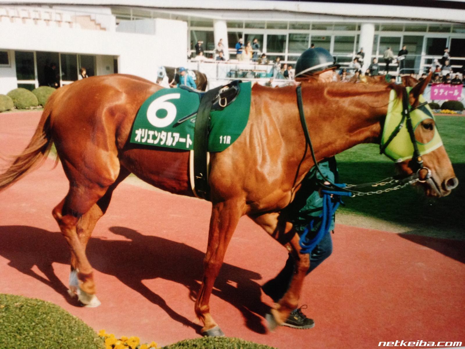 button-only@2x オルフェーヴル産駒(種牡馬)の特徴,評判は?2018年デビューの期待馬はアルママ!!